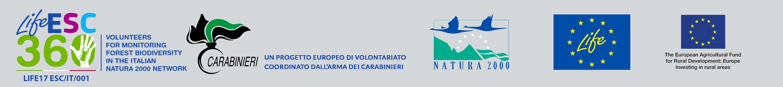 Un progetto europeo di volontariato coordinato dall'Arma dei Carabinieri - Un progetto europeo di volontariato coordinato dall'Arma dei Carabinieri